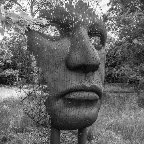 Free stock photo of black and white, face, sculptures, woodland
