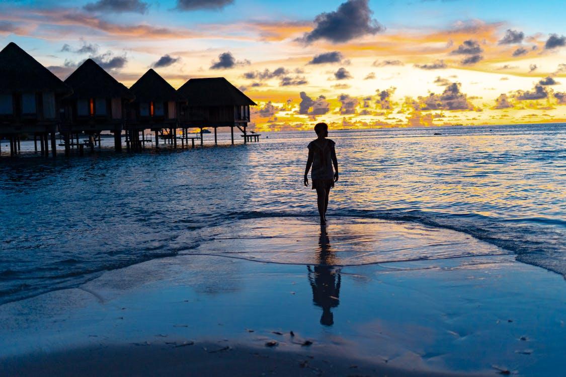Silhouette Photo of Woman Standing On Seashore