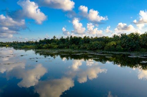 Δωρεάν στοκ φωτογραφιών με αντανάκλαση, δέντρα, διάρκεια της ημέρας, ινδικός ωκεανός