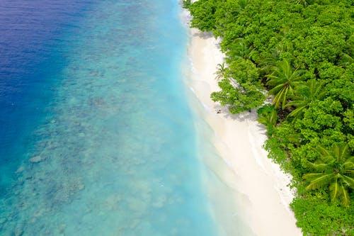 Gratis arkivbilde med ferie, hav, idyllisk, indiske hav