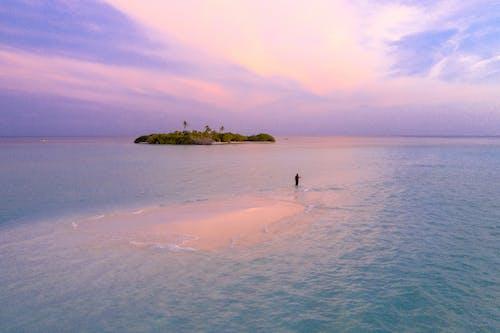 Gratis stockfoto met dageraad, eiland, indische oceaan, kust