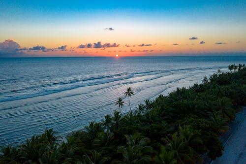 Základová fotografie zdarma na téma horizont, indický oceán, laguna, Maledivy