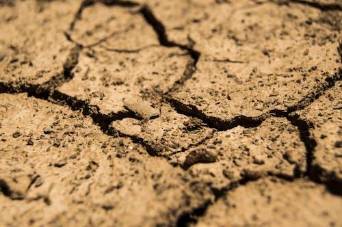 Gratis stockfoto met aarde, bodem, bruin, dorheid