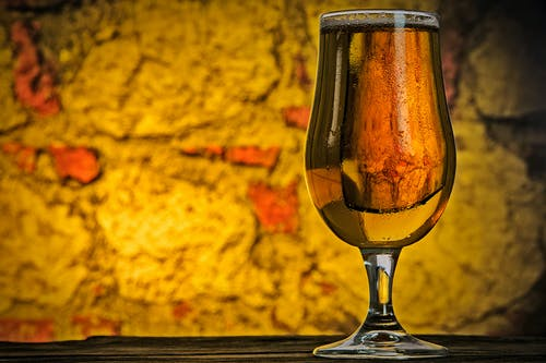 Free stock photo of alcohol, beer, brewery, bright