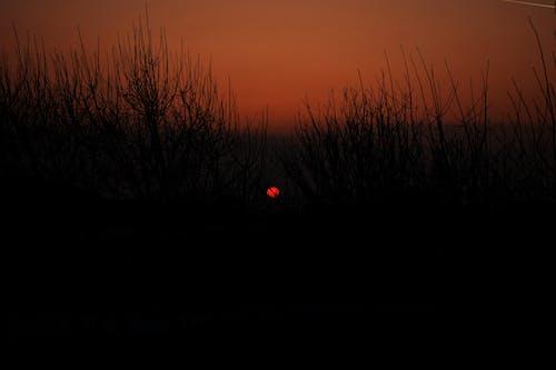 Photos gratuites de coucher de soleil, nature, photo de nature, soleil