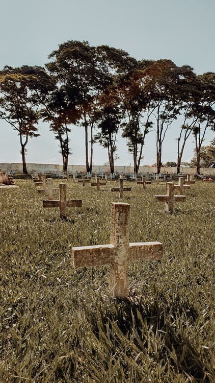 View Of A Graveyard