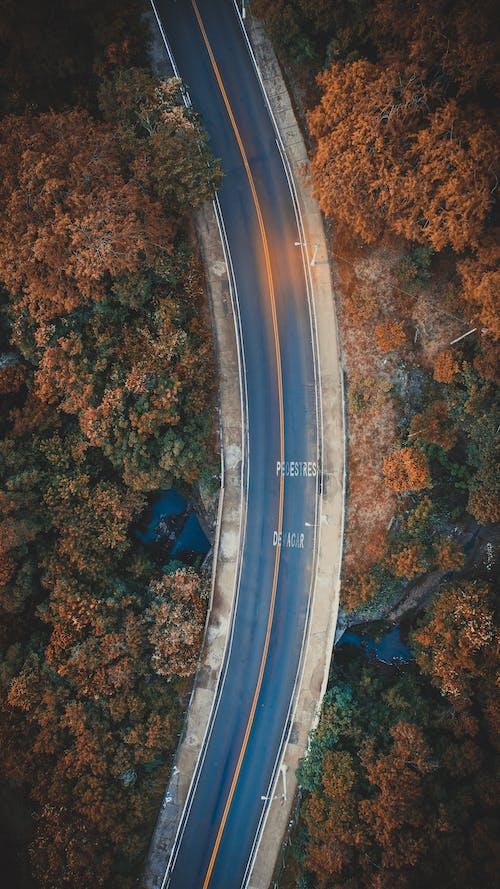 açık, ağaçlar, araç, asfalt yok içeren Ücretsiz stok fotoğraf