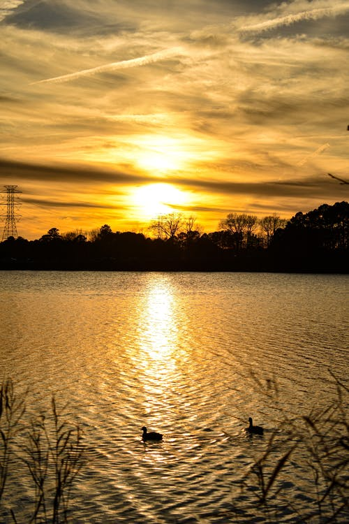 Fotobanka sbezplatnými fotkami na tému večerné slnko, západ slnka, zlaté slnko