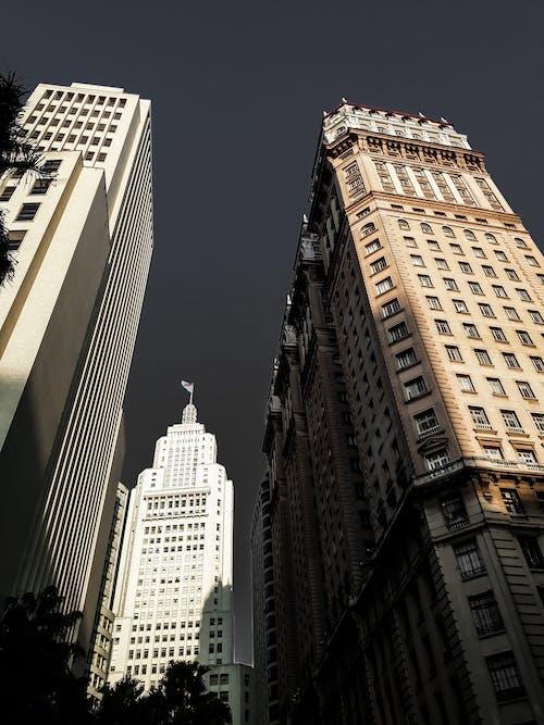 低角度攝影, 城市, 市中心, 建築外觀 的 免费素材照片
