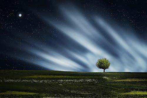 คลังภาพถ่ายฟรี ของ กลางคืน, กลางแจ้ง, จันทรา, ฉาก