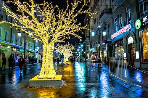 Imagine de stoc gratuită din arbori, arhitectură, beculețe de crăciun, caldarâm