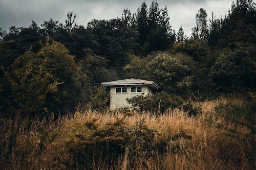 Immagine gratuita di abbandonato, degrado urbano, edificio abbandonato