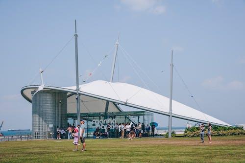 선착장, 싱가포르, 연 날리기의 무료 스톡 사진