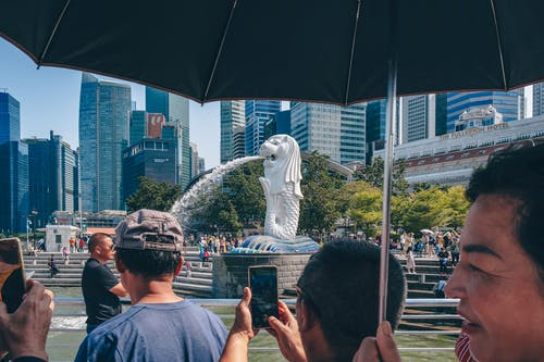 Free stock photo of central business district, crowded, Merlion