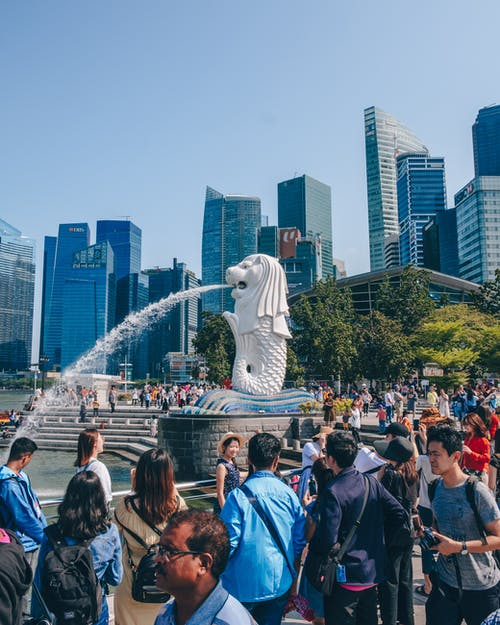 Free stock photo of central business districtcrowded, local sg, Merlion