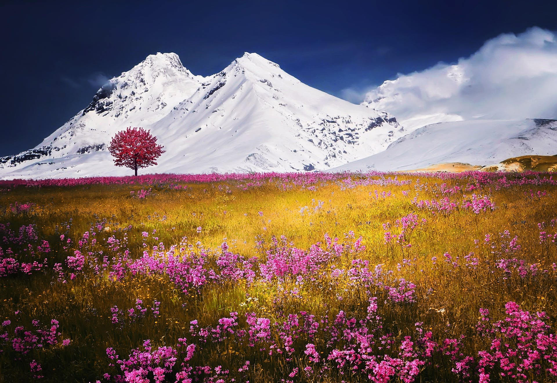 Pink Tall Tree Under Glacier Mountain