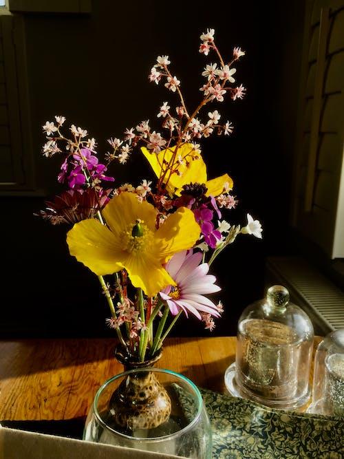 คลังภาพถ่ายฟรี ของ กลีบดอก, การจัดดอกไม้, การตกแต่ง, การถ่ายภาพหุ่นนิ่ง
