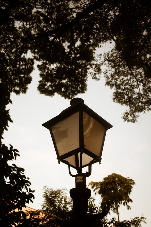 Black Street Lamp Near Green Trees