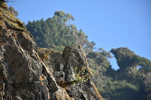 Foto profissional grátis de pedra, rocha
