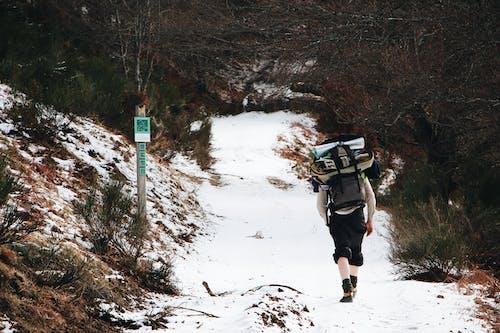 Безкоштовне стокове фото на тему «відпочинок, гірський туризм, гора»