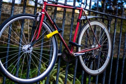 Free stock photo of bicycle, bike, bike on wall, cycle
