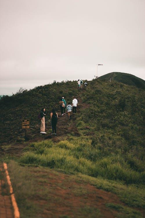 Základová fotografie zdarma na téma cesta, hora, hřiště, lidé