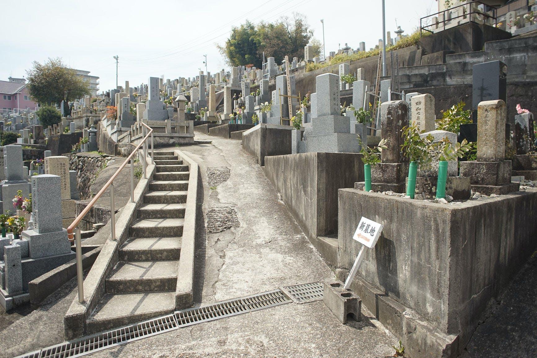 Free stock photo of gray, cemetery