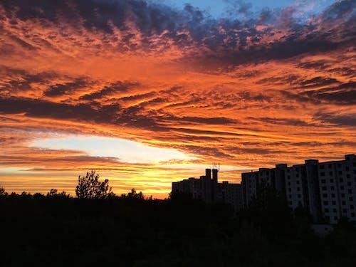 Foto d'estoc gratuïta de alba, arbres, arquitectura, capvespre