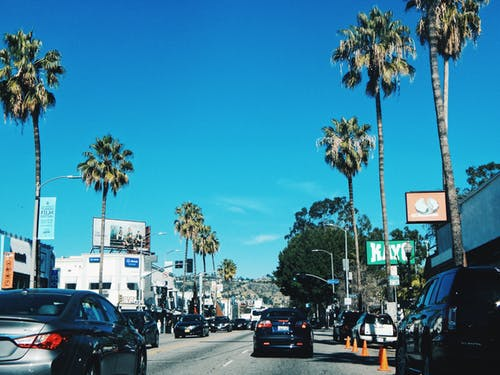 Free stock photo of los angeles, palms, traffic