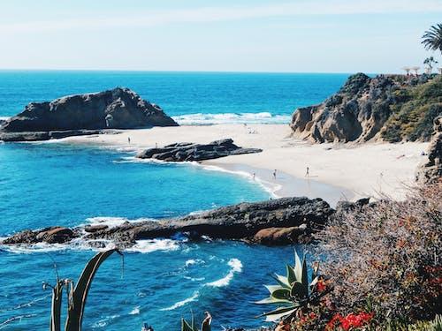 Free stock photo of beach, los angeles, sea