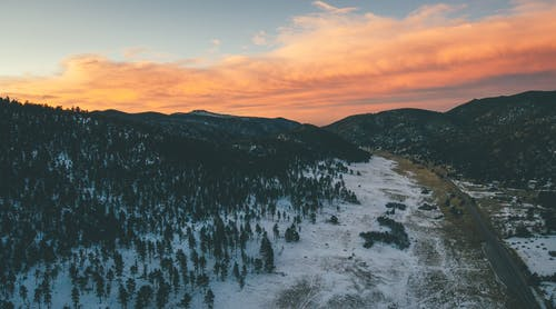 Green Trees on Snow Covered Ground during Sunset