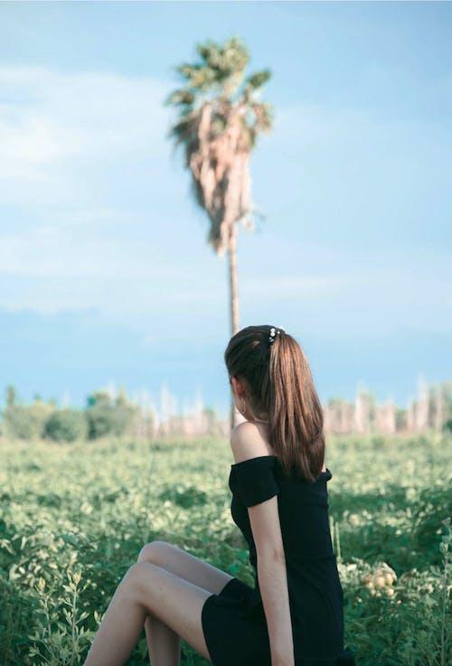Free stock photo of beauty, g, girl, landscape