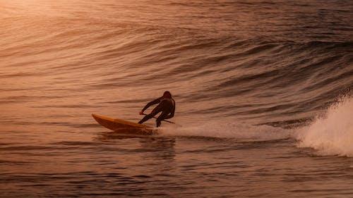 남성, 남자, 물, 바다의 무료 스톡 사진