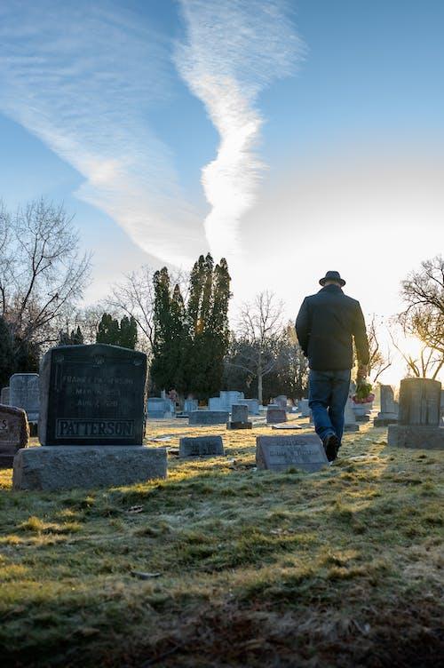 Fotos de stock gratuitas de afuera, arboles, cementerio, césped