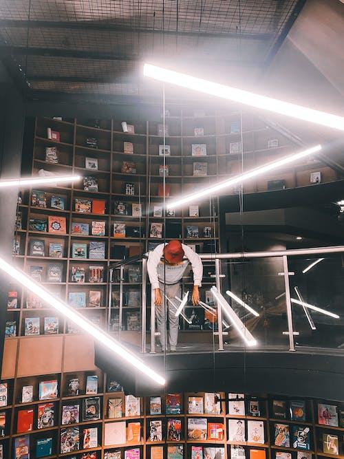Foto profissional grátis de ação, apólice, biblioteca, dentro