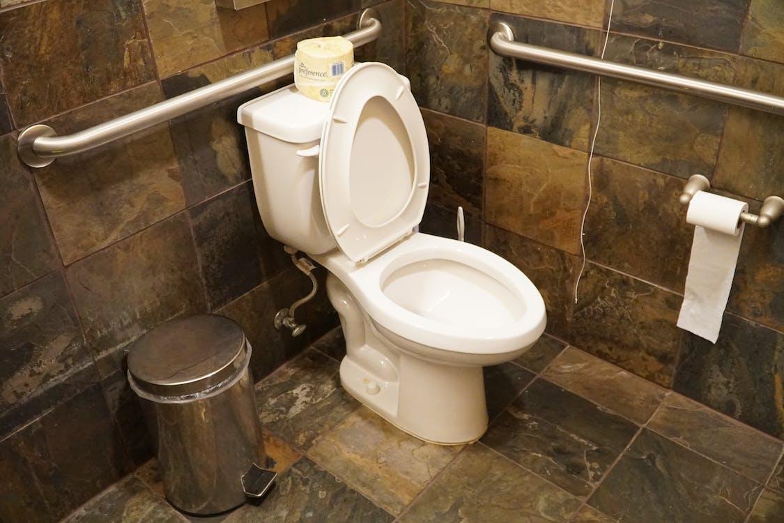 Free stock photo of bathroom, toilet, toilet paper