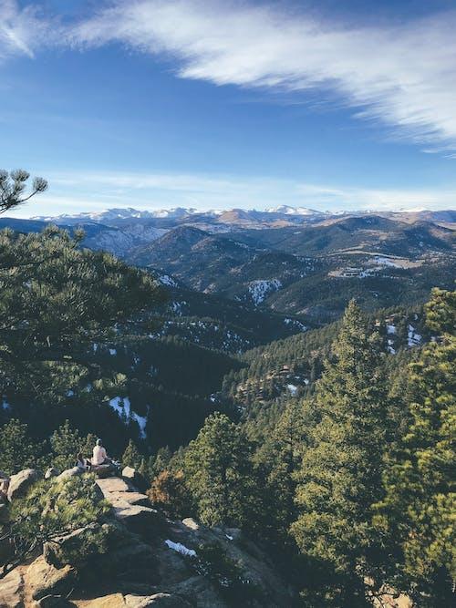 Immagine gratuita di alberi, bella vista, colorado, escursionismo