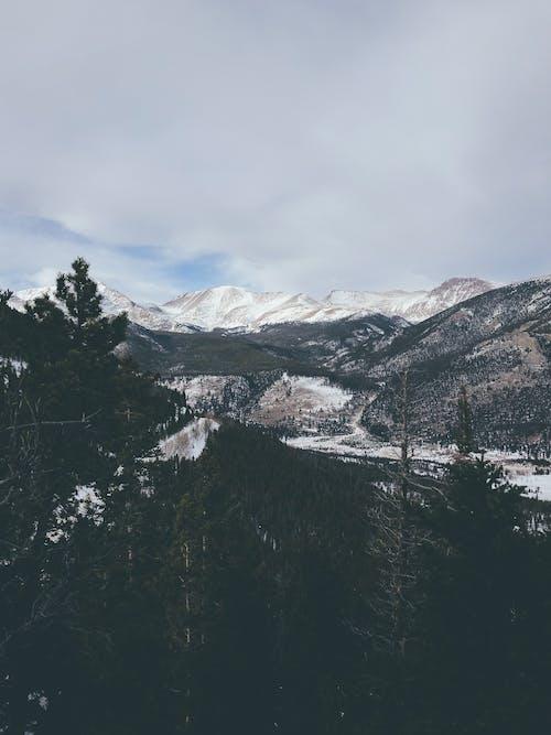 Immagine gratuita di alberi, colorado, escursionismo, montagne