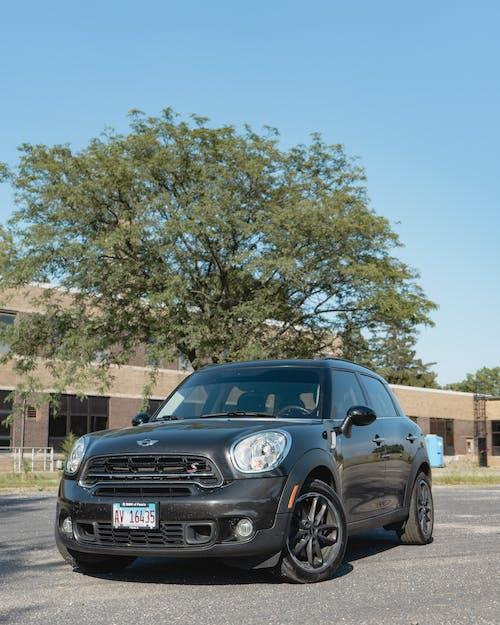 Ingyenes stockfotó autó, fa, kék ég témában
