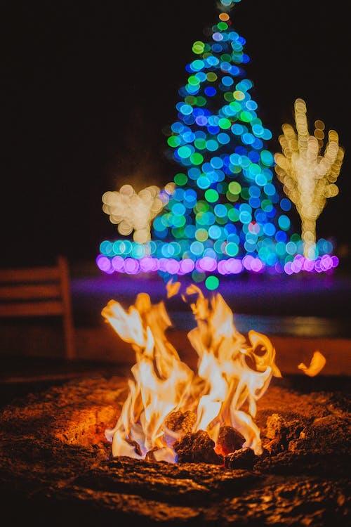 คลังภาพถ่ายฟรี ของ กองไฟ, การเผาไหม้, ความร้อน