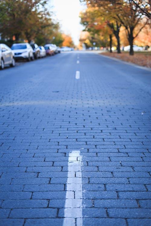 Immagine gratuita di ciottoli, ciottolo, strada di ciottoli