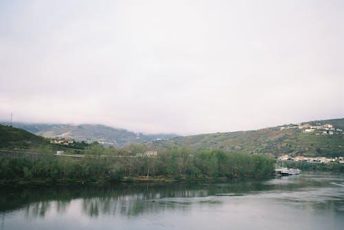 Free stock photo of beautiful landscape, film, film camera, foggy