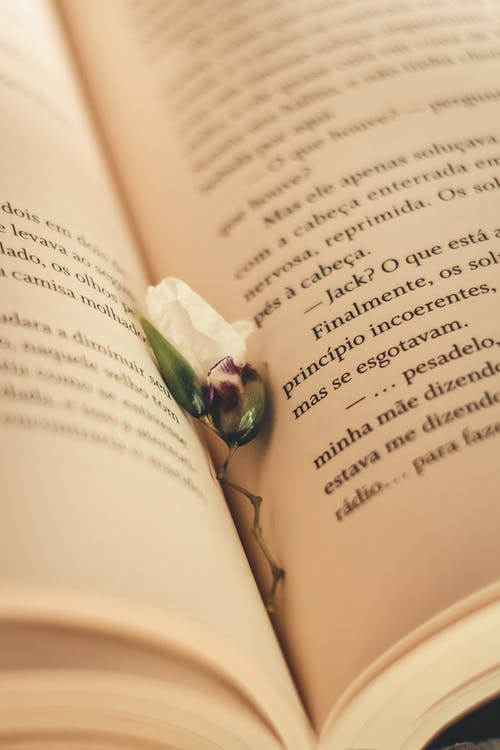 Green Flower on Book Page