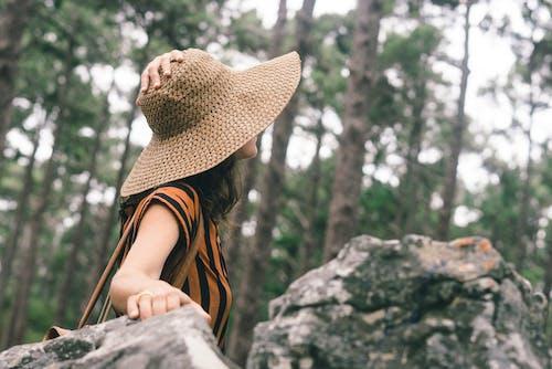 Kostenloses Stock Foto zu abenteuer, bäume, entspannung, fashion