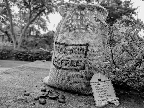Gratis stockfoto met coffeeshop, koffie, koffie branden, koffiebonen