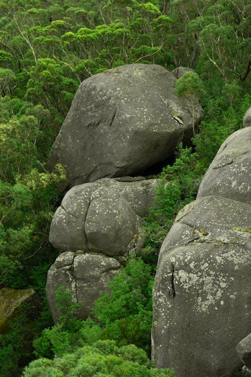 Ảnh lưu trữ miễn phí về Châu Úc, đá, Đá rêu, những tảng đá