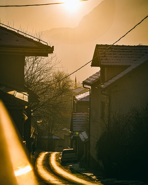 View Of Brown Wooden Houses Near Bare Trees On A Sunny Day