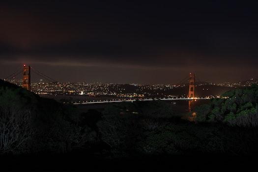 Free stock photo of city, dawn, landscape, nature