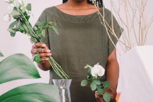 Fotobanka sbezplatnými fotkami na tému biele ruže, človek, dekorácia, jemný