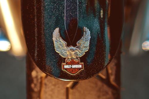 Free stock photo of badge, harley davidson, motorcycle, tire